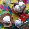 Sorbet coco antillais