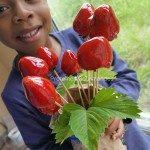 Un bouquet d'amour… de fraises